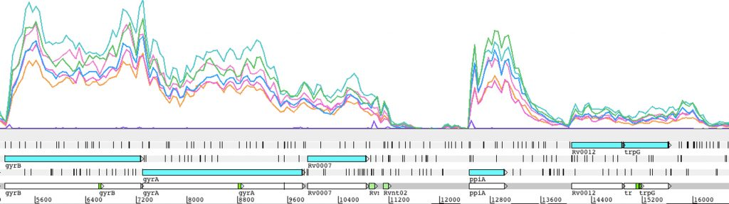 USE Transcriptomic data from Mycobacterium tuberculosis