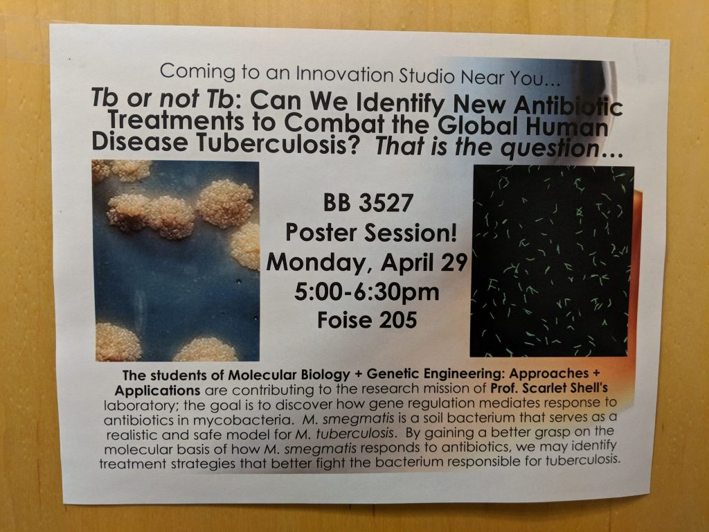 BB3527 poster session announcement